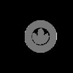 U.S. Green Building Council Logo